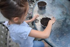 Preparing soil in pot