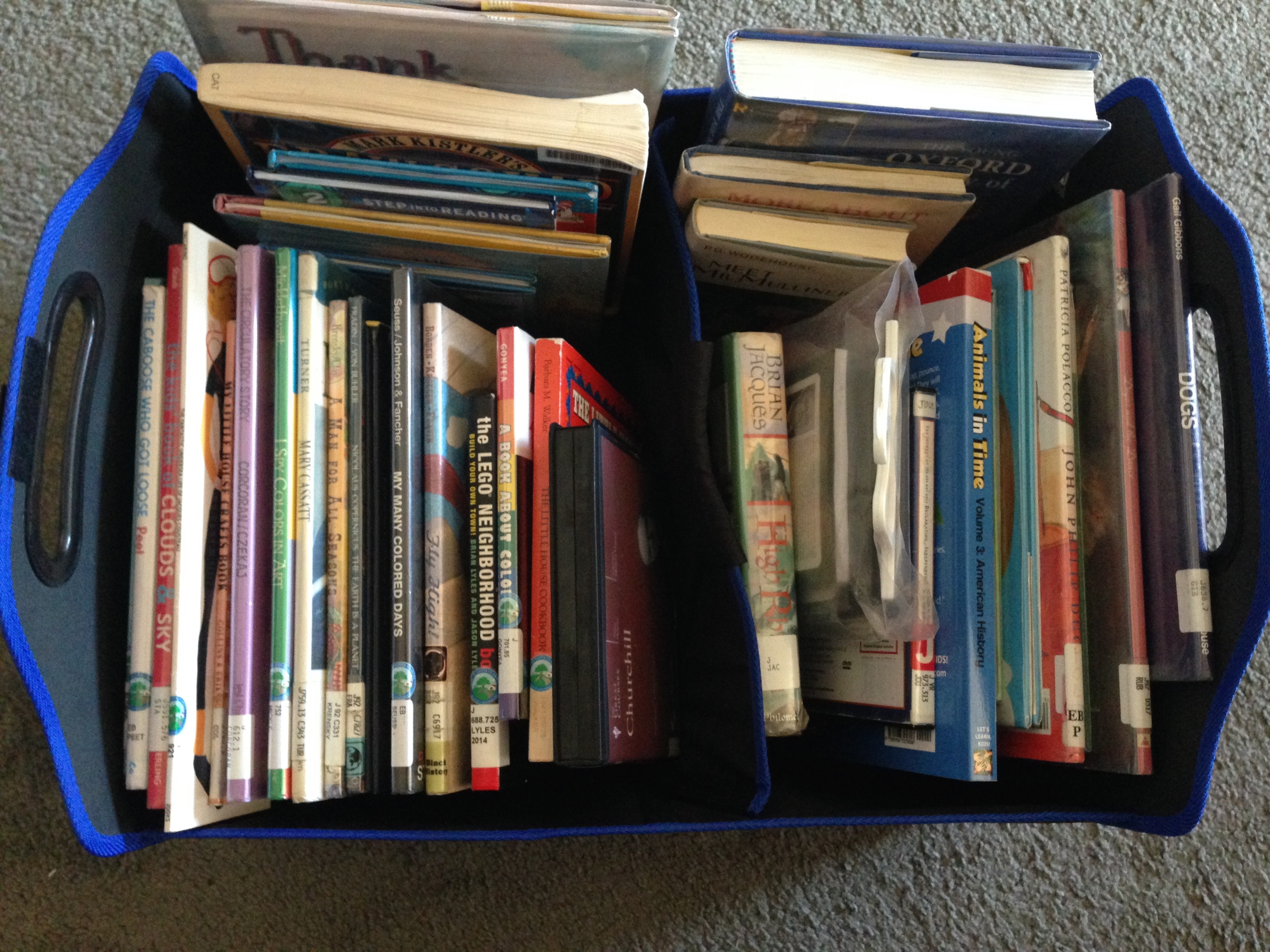 Keeping library books organized