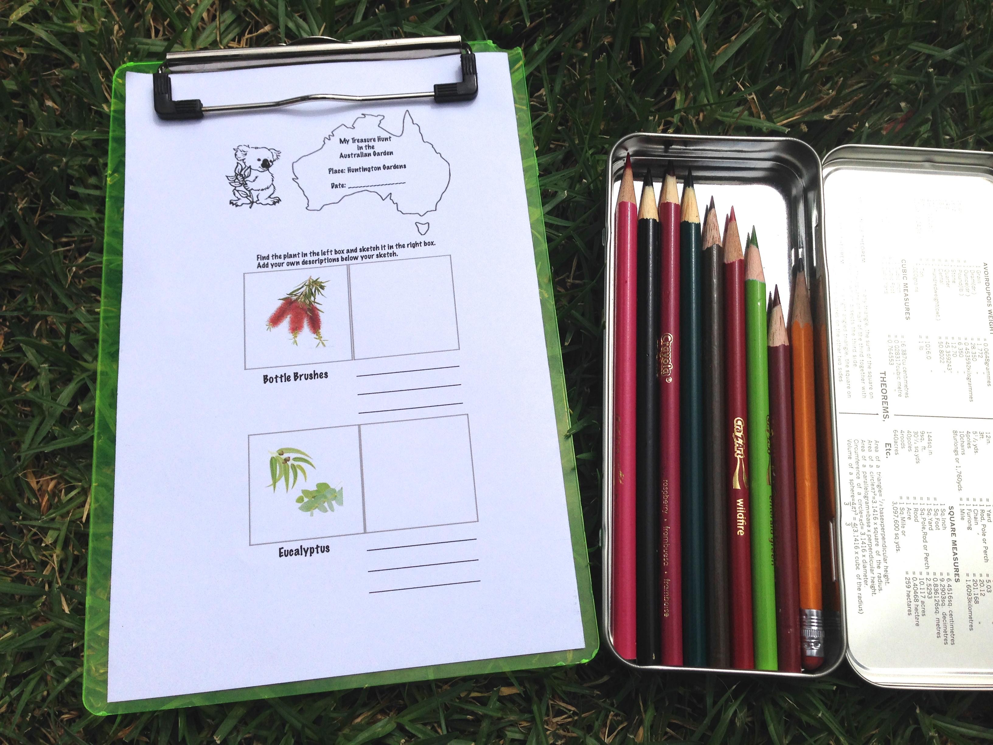 Australian plant scavenger hunt kit